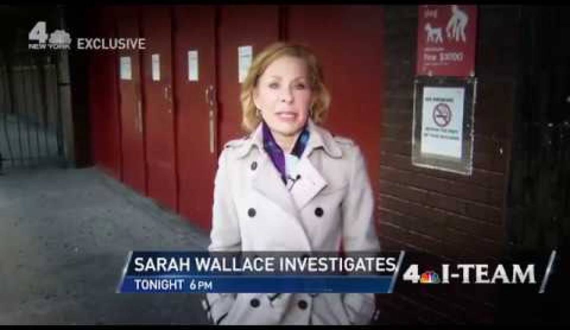 Sarah Wallace: The Lost Interview